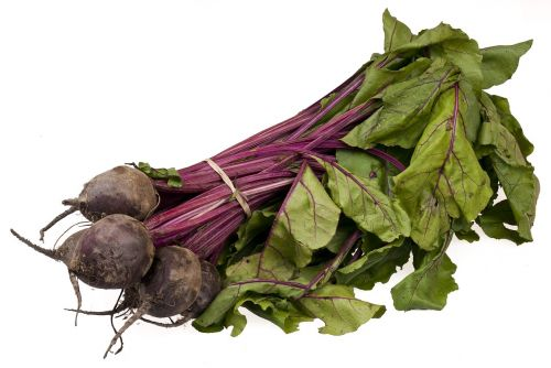 beetroot bundle organic