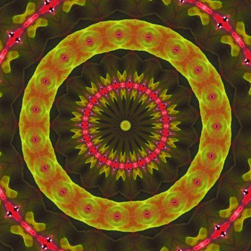 Begonias Kaleidoscope