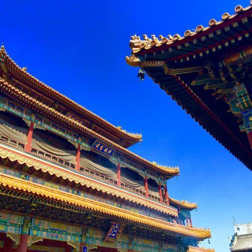 beijing lama temple classical