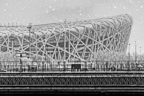 beijing snow nest