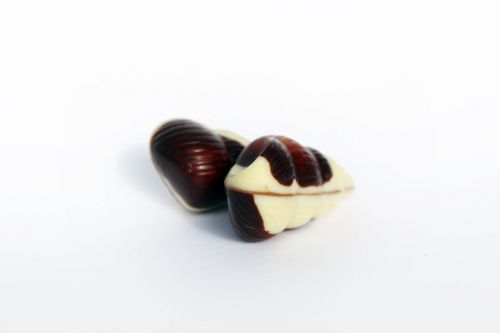 belgian chocolates mussels chocolate