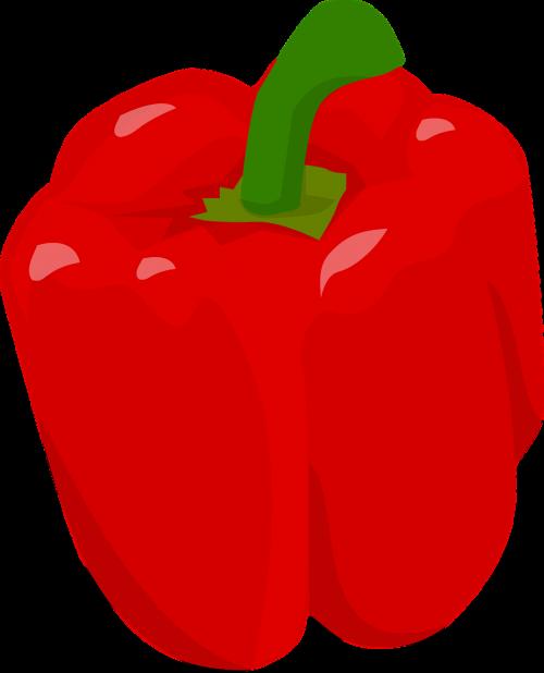 bell pepper capsicum food