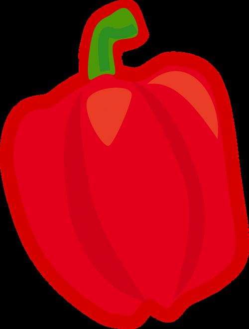 bell pepper pepper vegetable