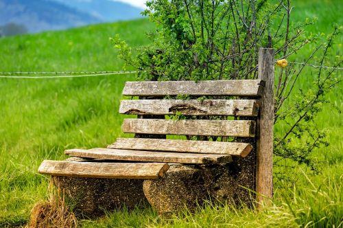 bench bank wood