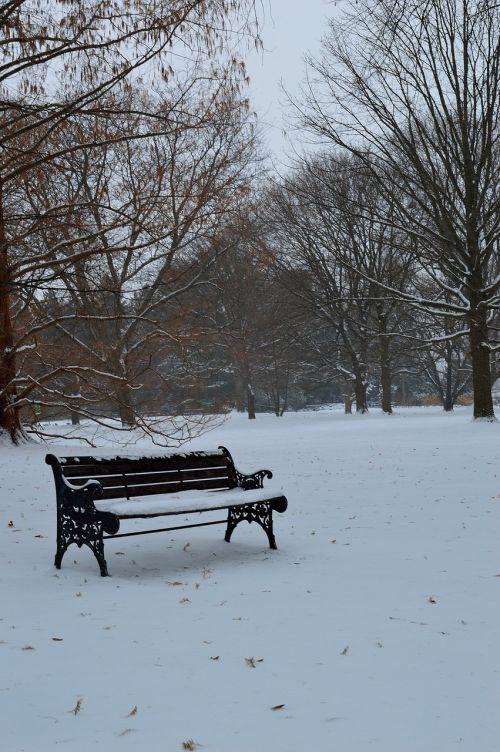 bench winter season