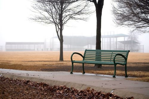 bench park fog