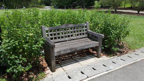 bench garden nature
