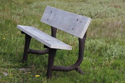 bench  newfoundland  grass