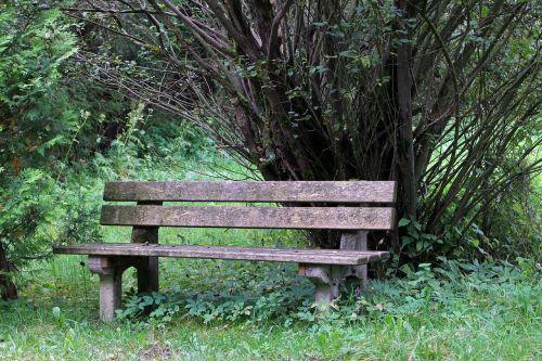 bench bank seat