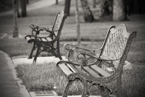 benches park outdoor