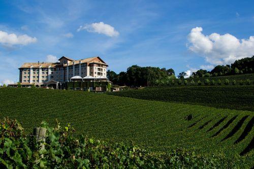 bento gonçalves winery rio grande do sul