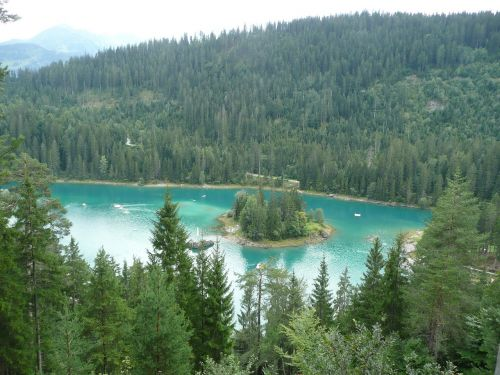 bergsee firs lake