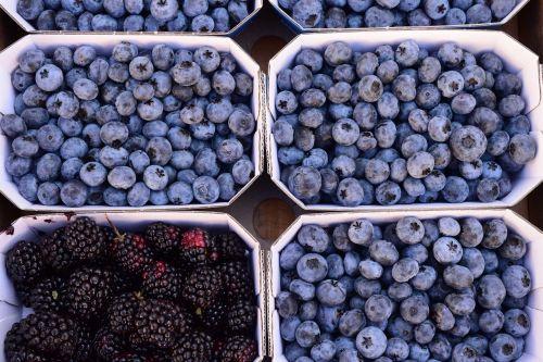 berries blueberries blackberries