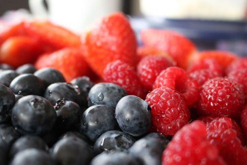 berries public record frisch