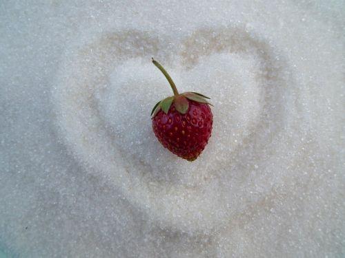 berry strawberry sugar