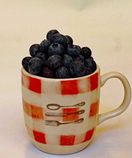 berry  blueberry  cup