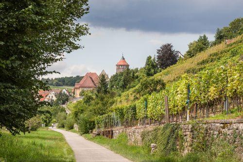 besigheim vineyard swabia