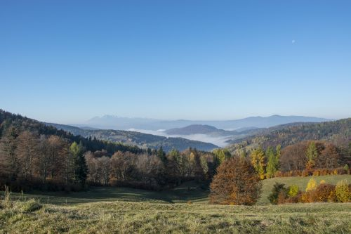 beskid sądecki autumn gold autumn in the mountains