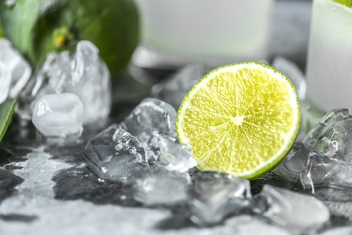 beverage  citrus  closeup
