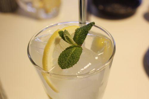 beverages cocktail lemon