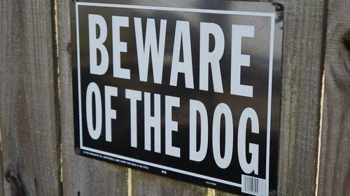 beware of dog  sign  beware
