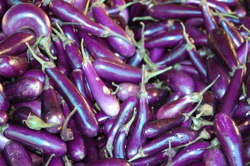 bhutan  organic  eggplant