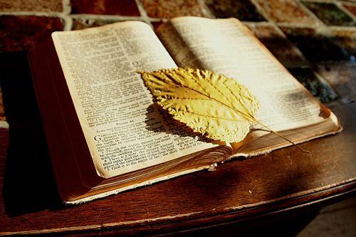 bible read book