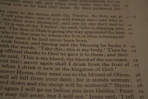 bible reading passage