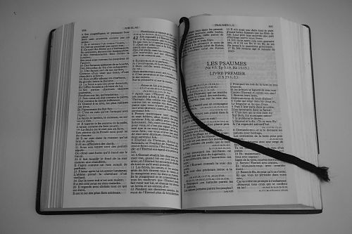 bible religion reading bible