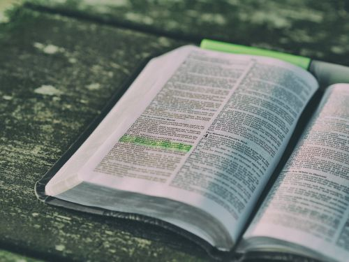 bible blur book