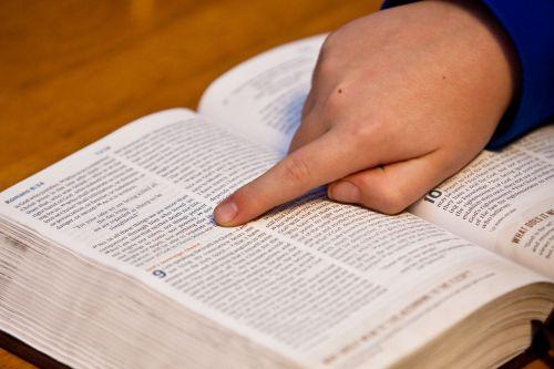 bible study bible hand