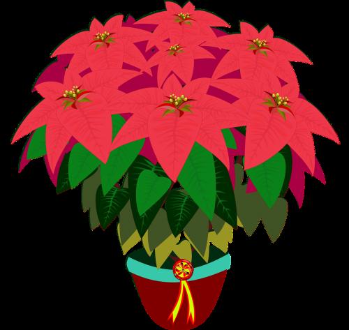 bico de papagaio clip art flor