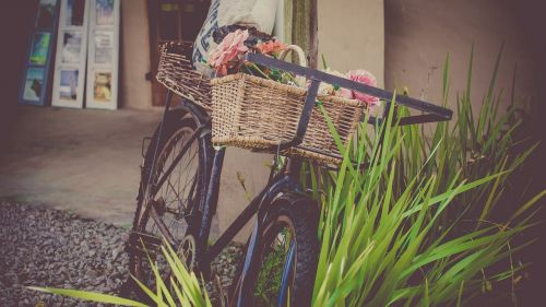 bicycle flowers shop