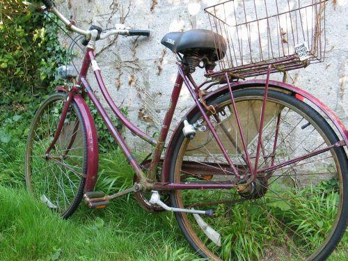 bicycle bike garden