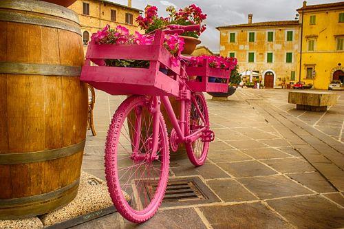 bicycle rosa botte