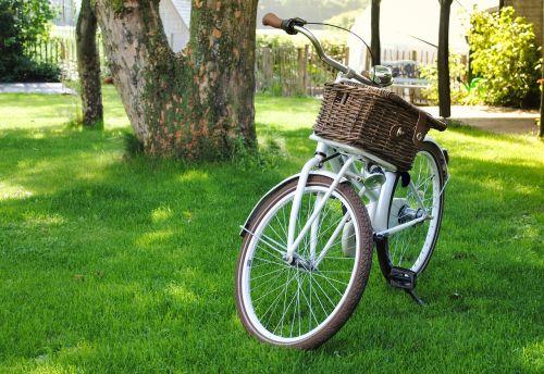 bicycle basket transport