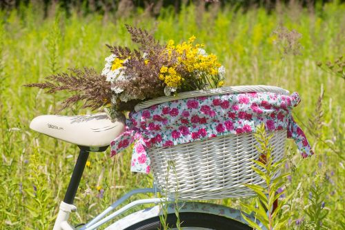 bicycle summer basket