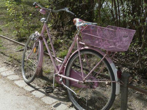 dviratis,dviratis,Sportas,gabenimas,rožinis,linksma,ciklą,veikla,lauke,važiuoti,poilsis,laisvalaikis,aktyvus,pratimas,dviračiu,ratas,dviratininkas,dviračiu,retro,tinka,transportas,baikeris,pedalas,vairai
