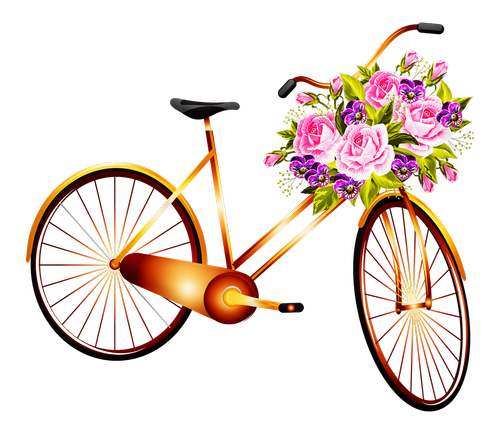 bicycle  basket with flowers  woman bicycle
