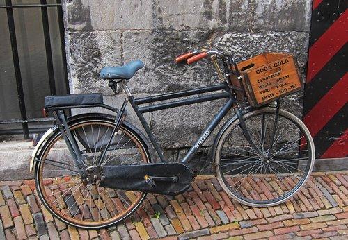 bicycle  europe  netherlands