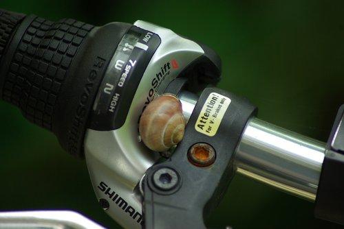 bicycle  handlebar  snail