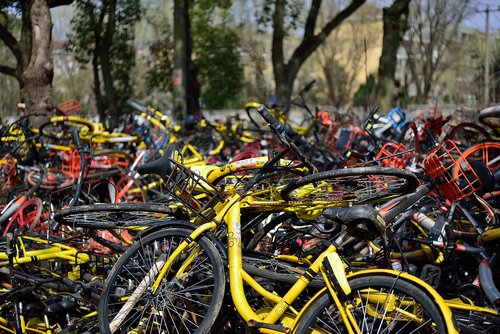 bicycle  sharing  ofo