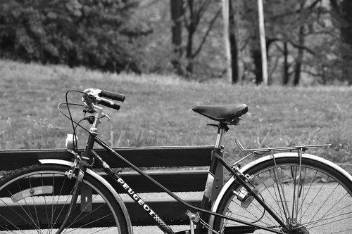 bicycle  bike  cycling