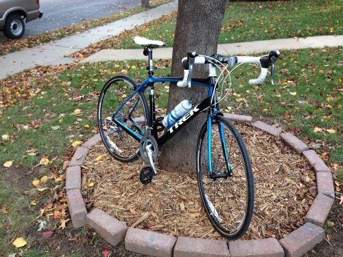 bicycle trek bike