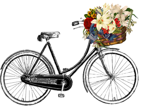bicycle flower bunch
