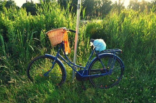 bicycle bike vintage bicycle