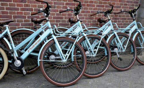 bicycles rental bikes bike
