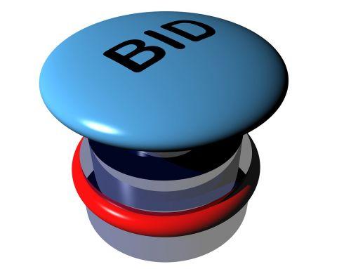 bid auction button