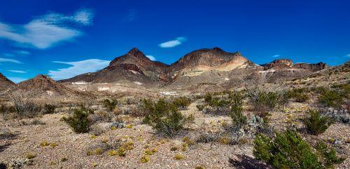 didelis lenkimo nacionalinis parkas,texas,kraštovaizdis,Nuotolinis,dykuma,vaizdingas,lauke,dykuma,kalnai,hdr,panorama