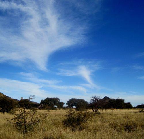 big blue sky clouds whispy